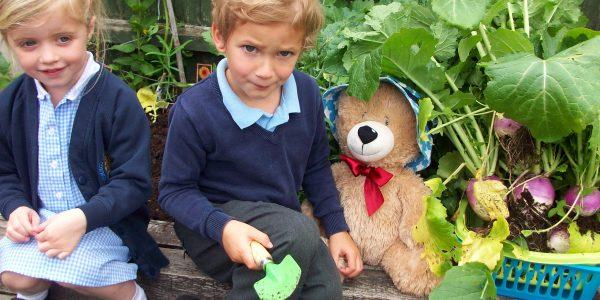 Nursery home page